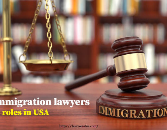 Immigration lawyers' roles in USA