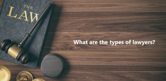 What are the types of lawyers